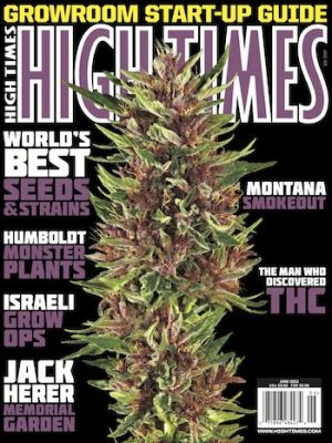 High Times Mandala Seeds Hall of Fame