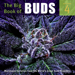 Big Book of Buds 4