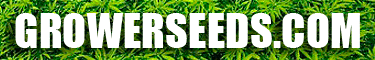 Grower Seeds